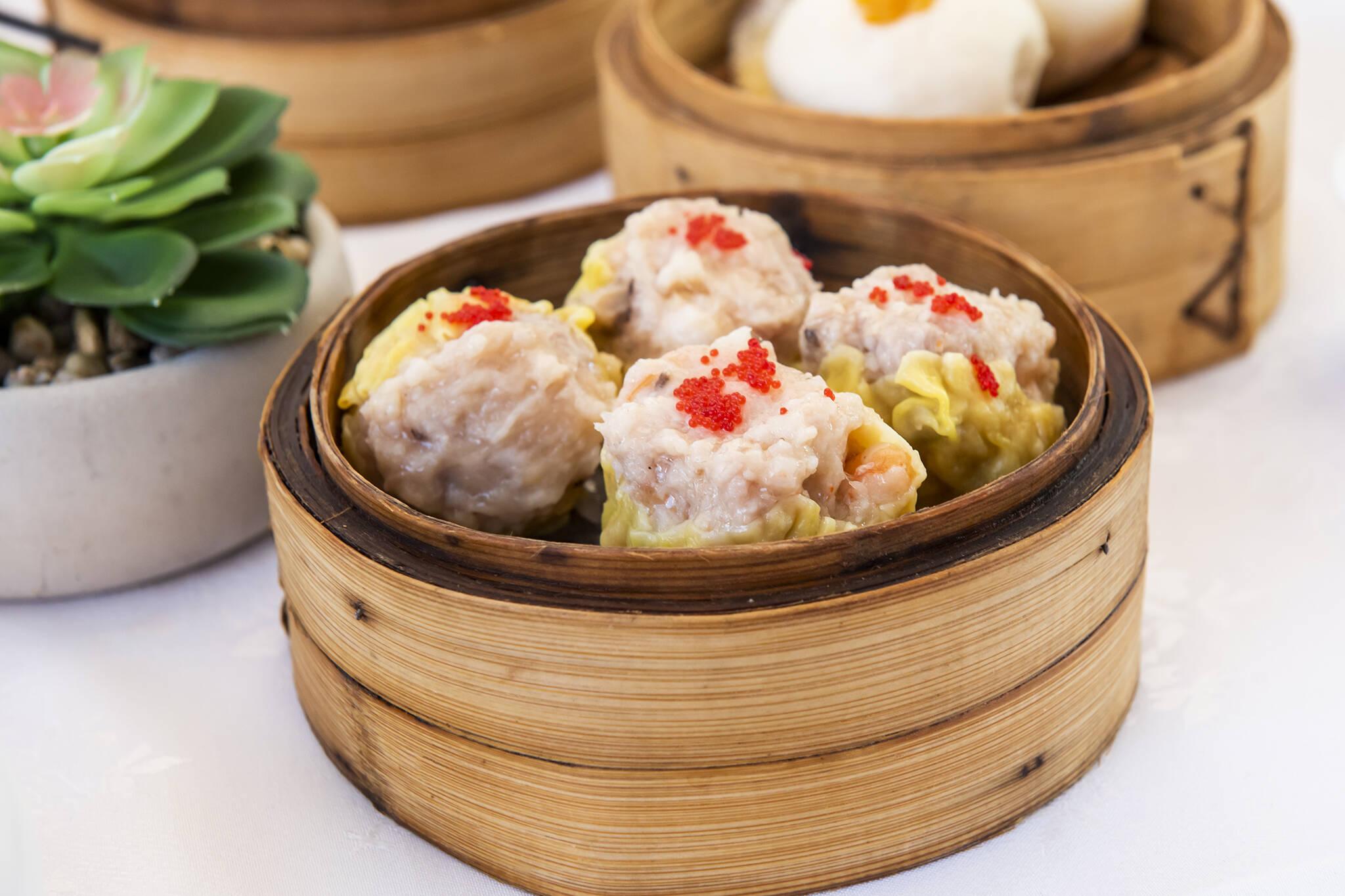 yangs chinese cuisine toronto
