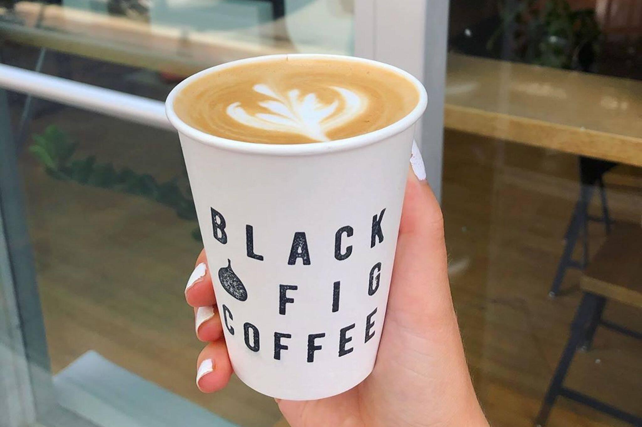 Black Fig Coffee Toronto