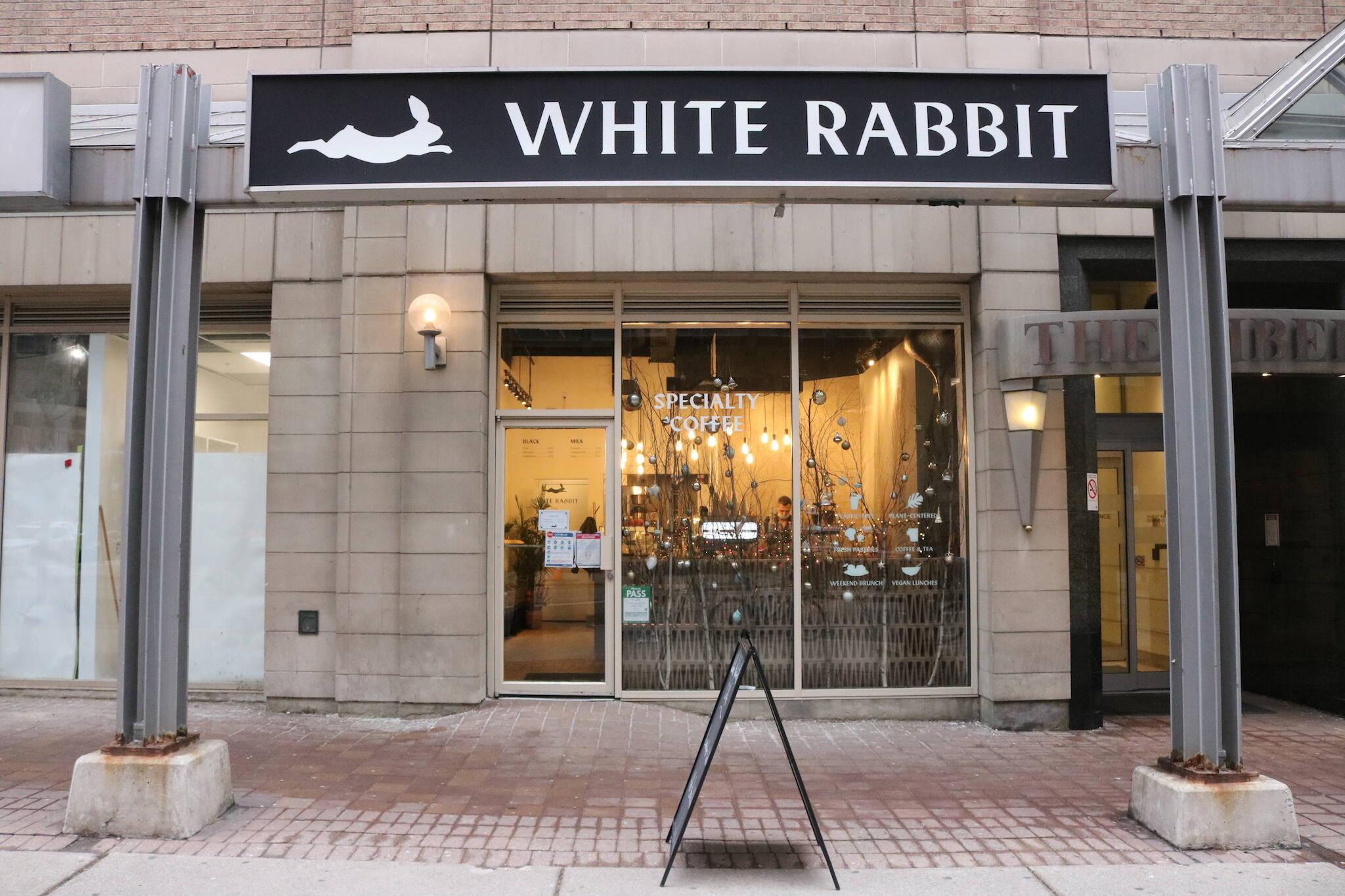 white rabbit toronto
