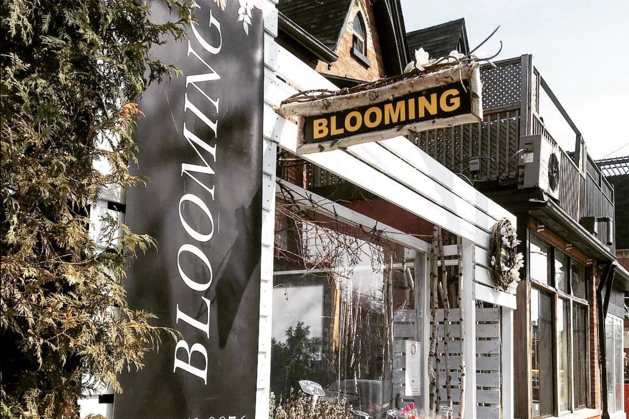 blooming flower bar toronto