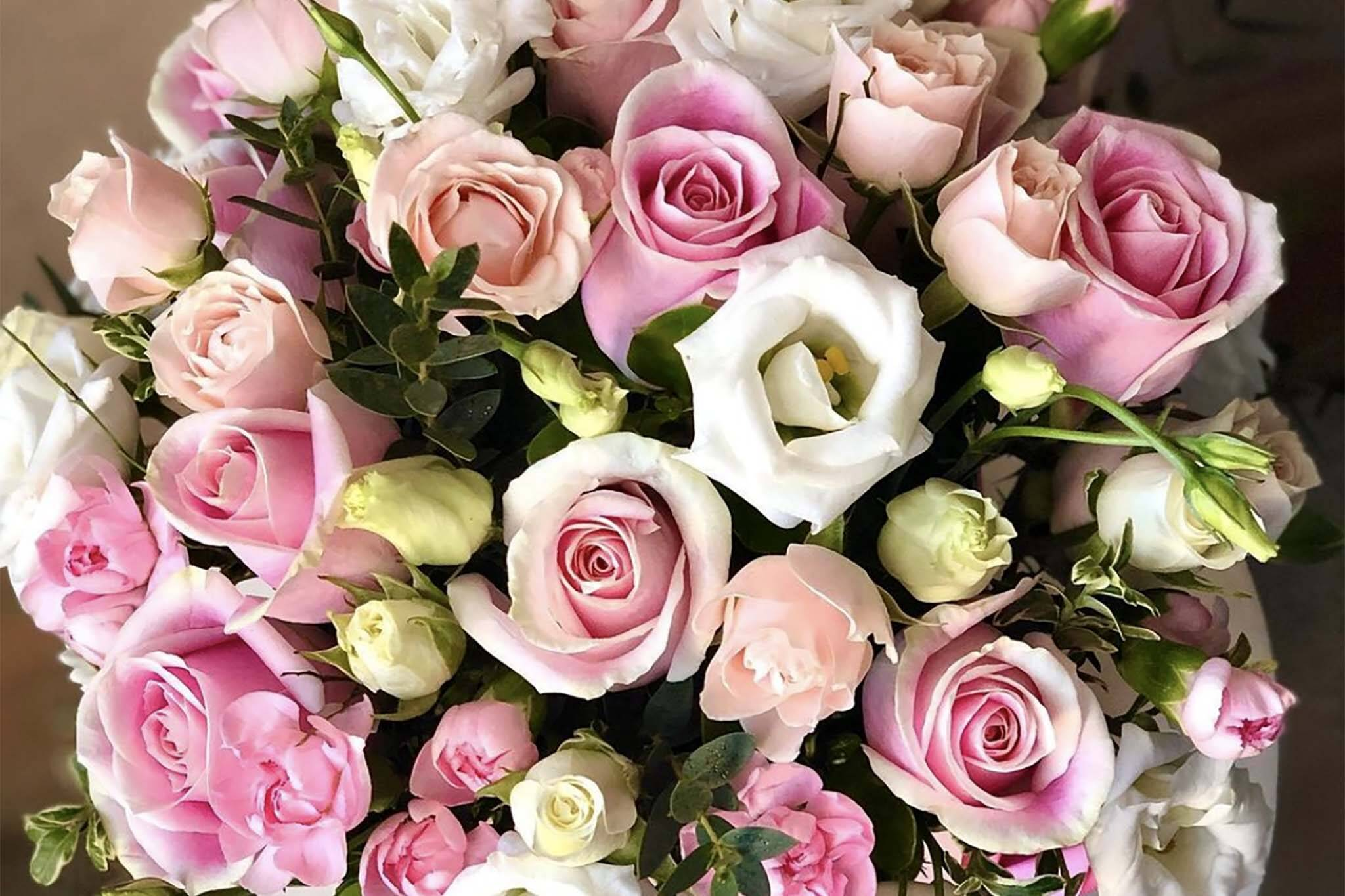 florida flowers toronto