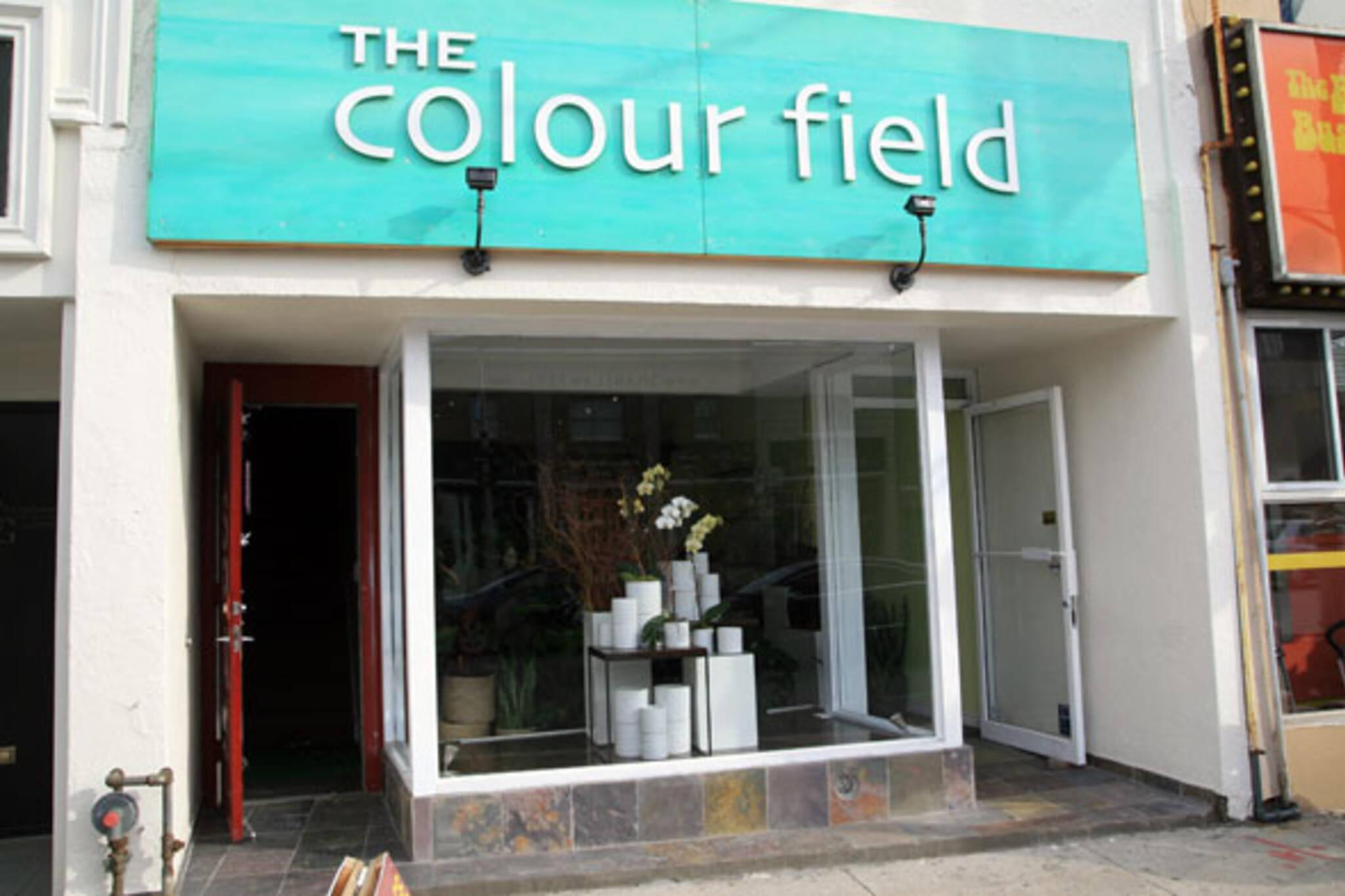 The Colour Field Toronto