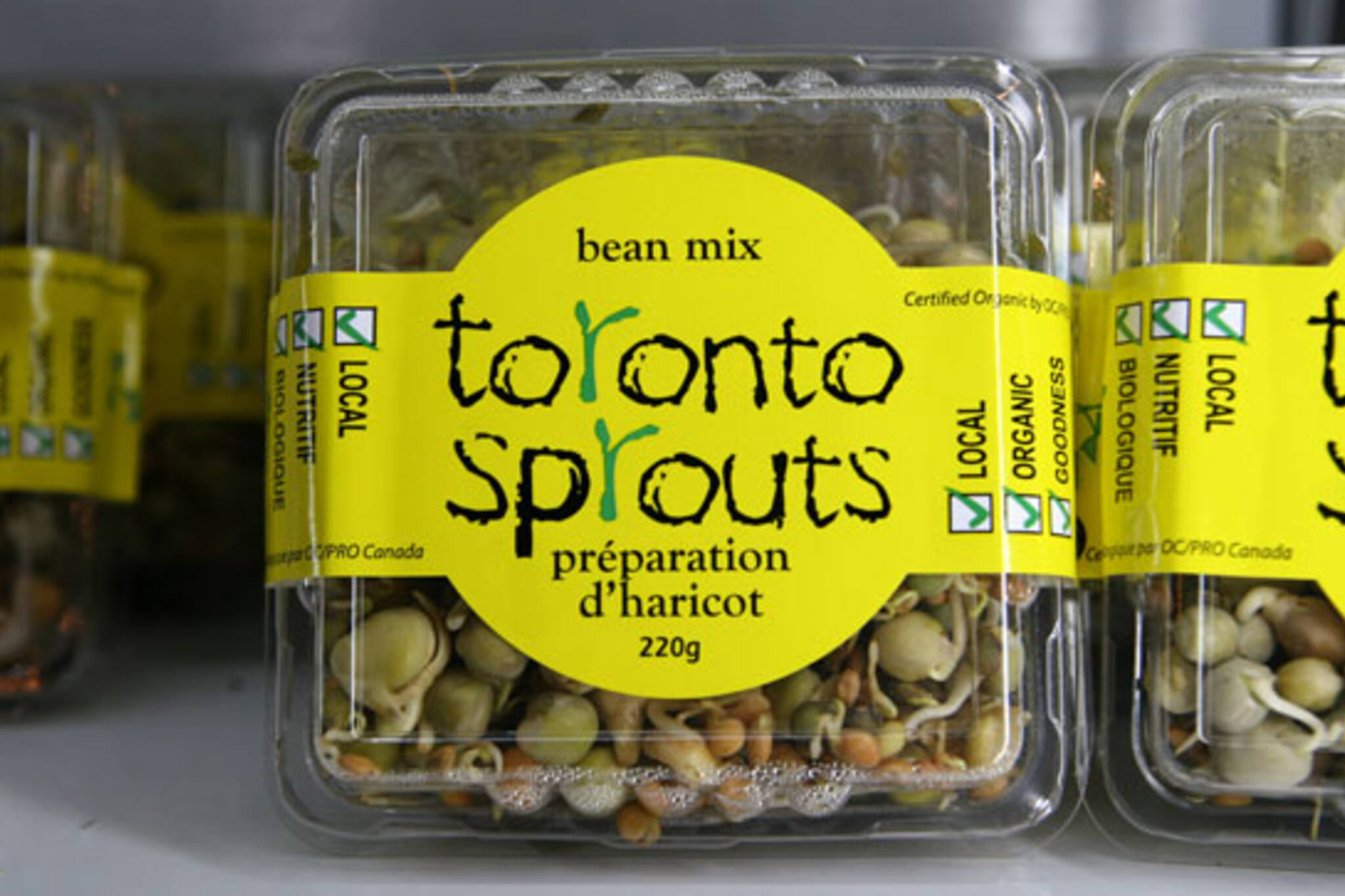 Toronto Sprouts