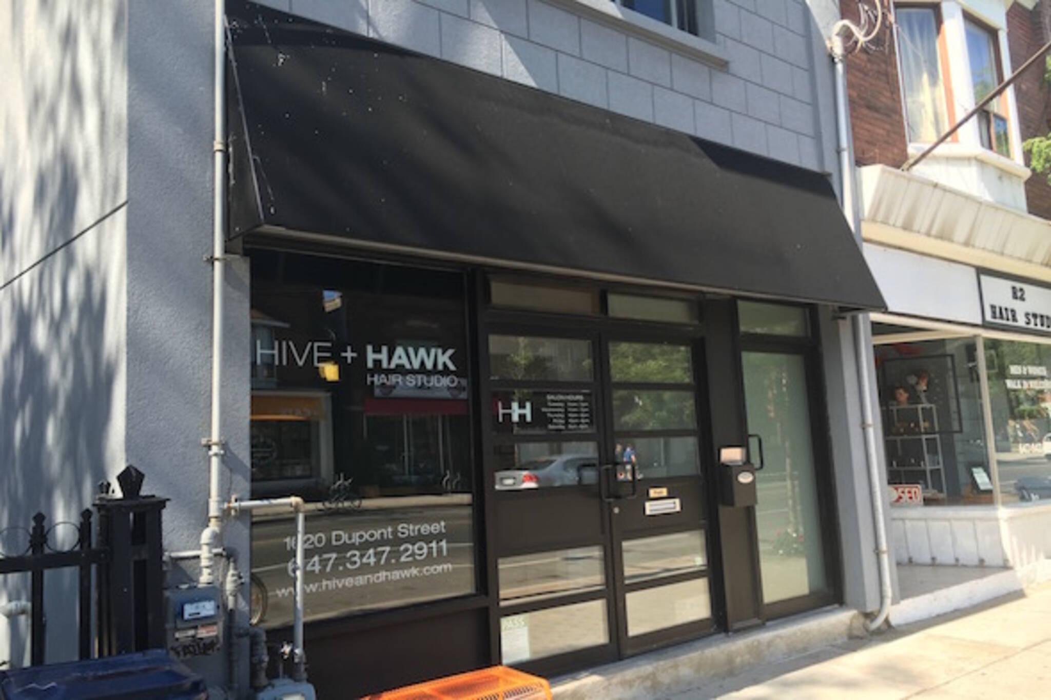 Hive Hawk Toronto