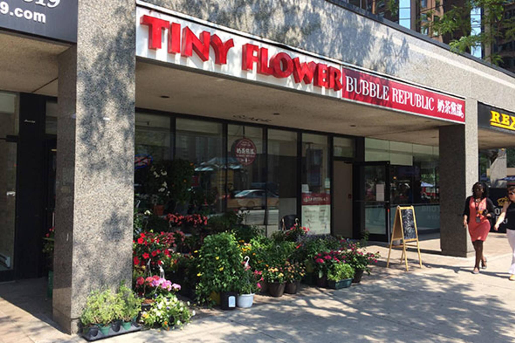Tiny flower Toronto