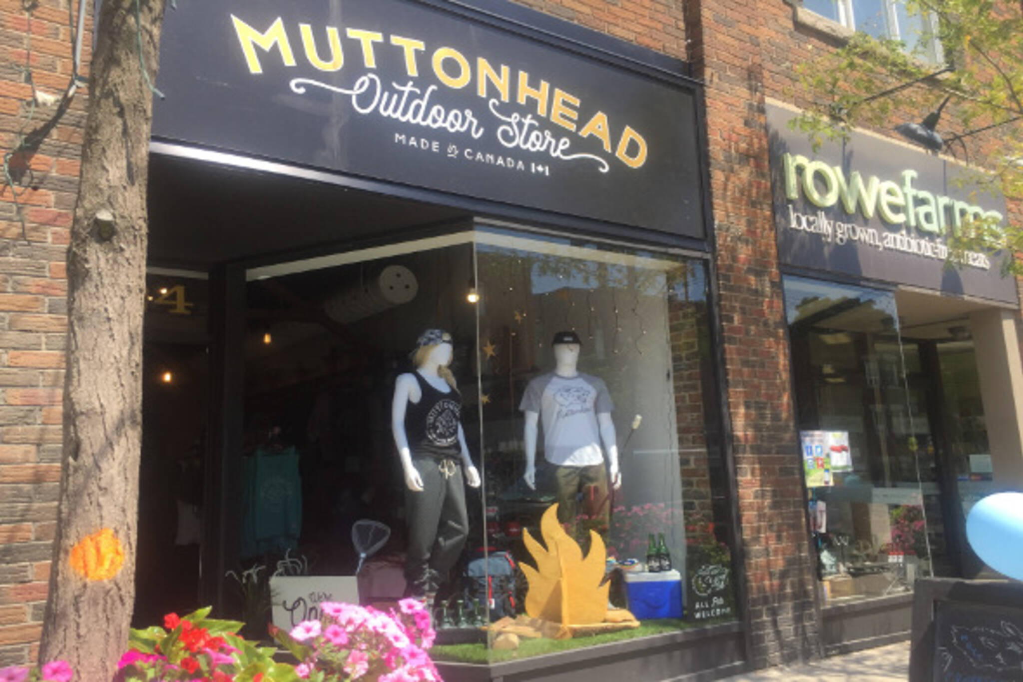 Muttonhead