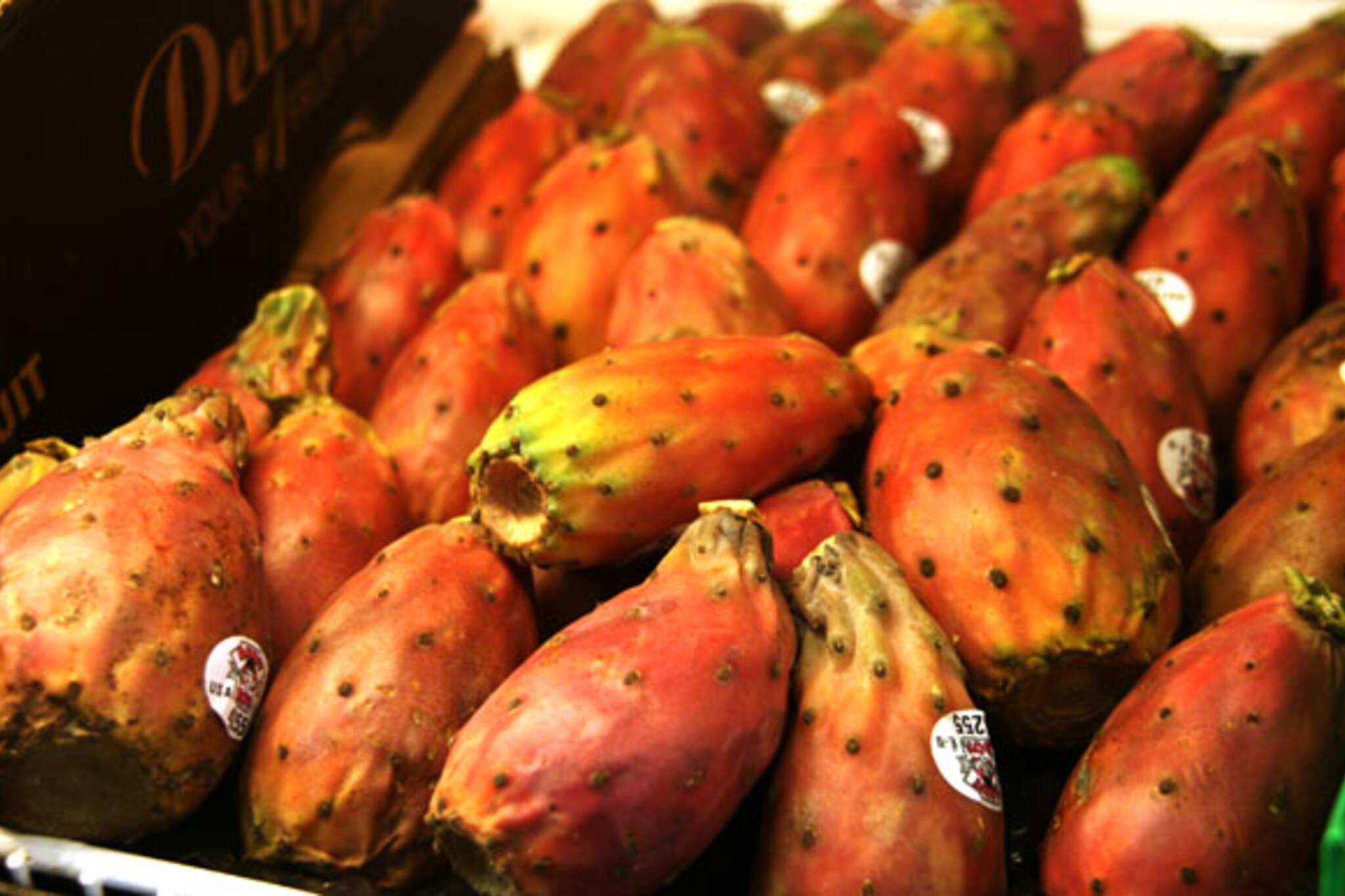 Cataldi Prickly Pears