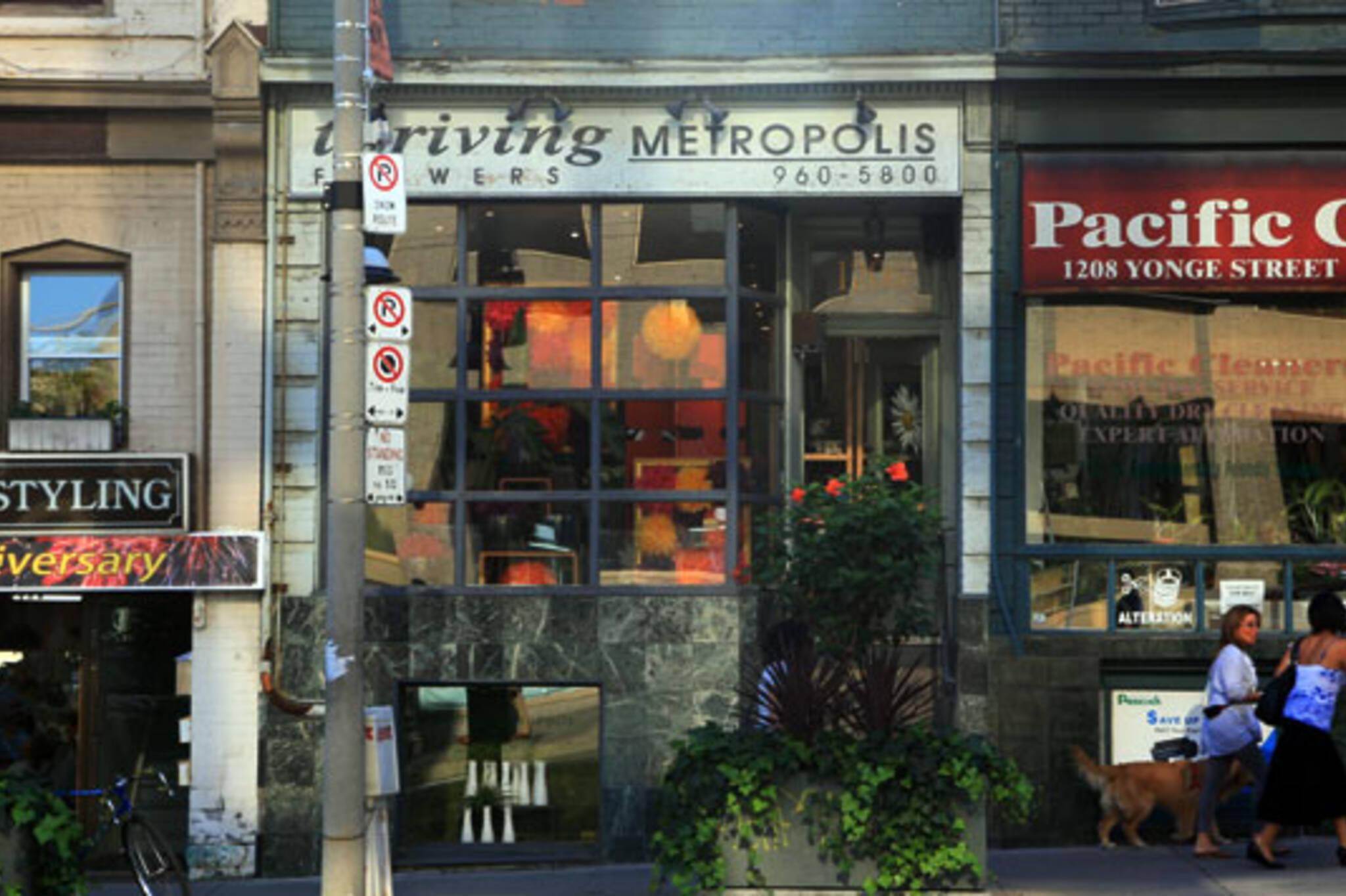 Thriving Metropolis Toronto