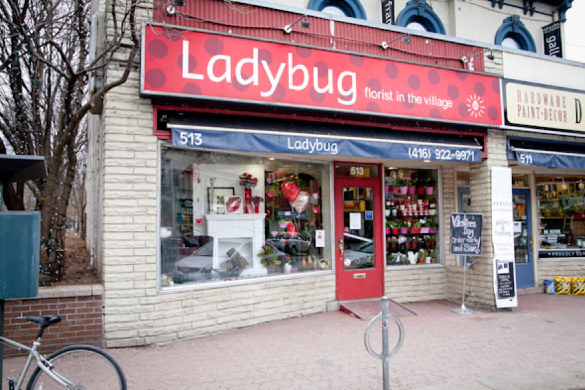 Ladybug Florist Toronto