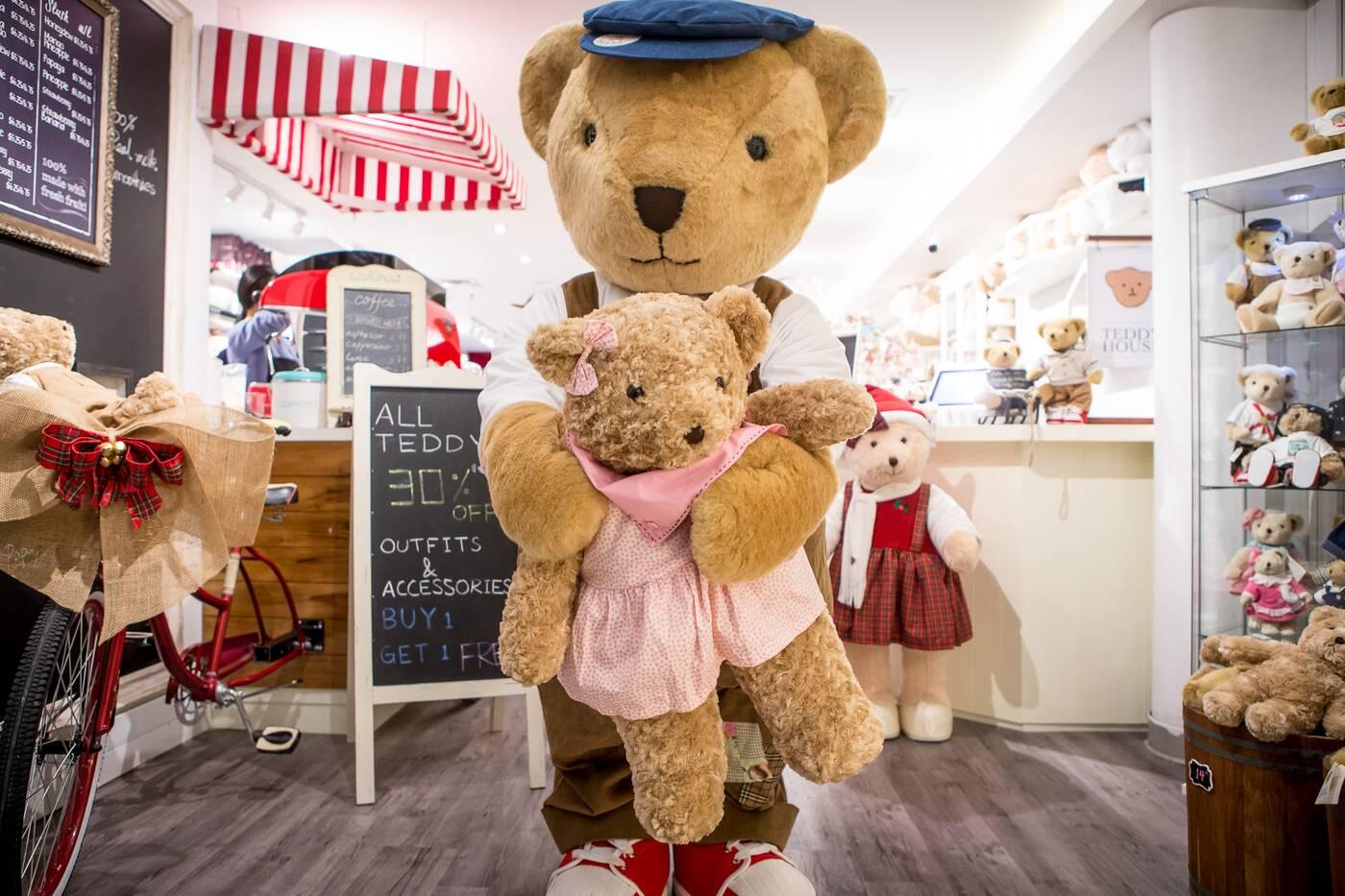 Teddy story Toronto