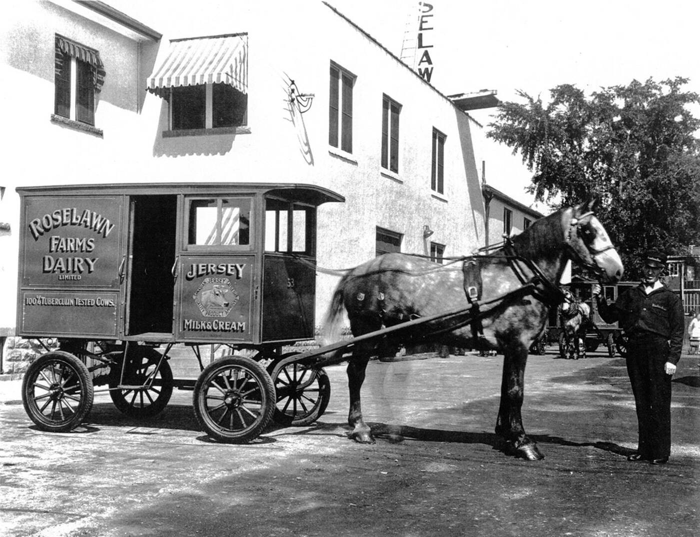 milk delivery toronto