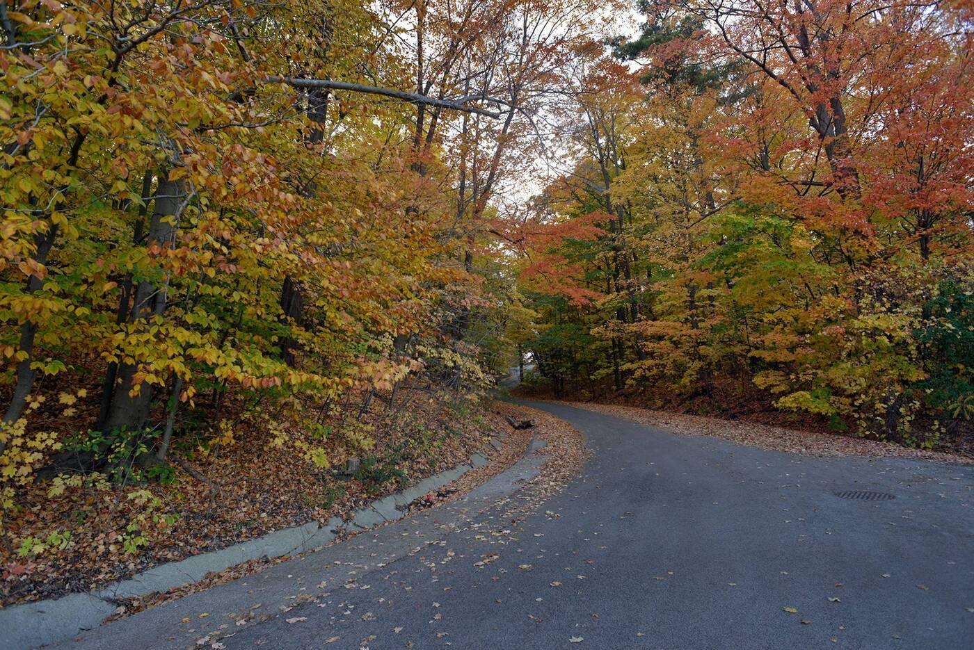 redway road
