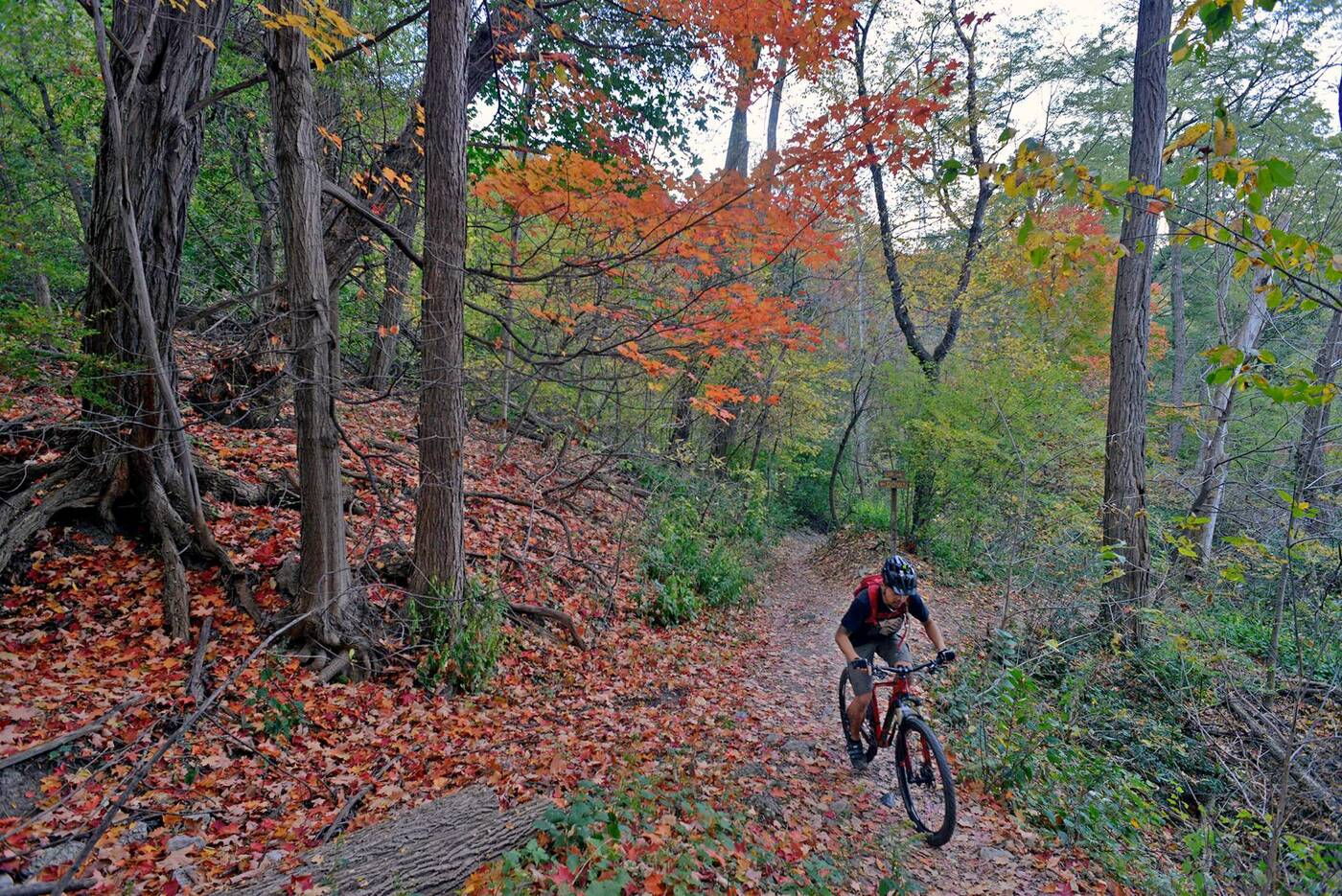 don valley bike trails
