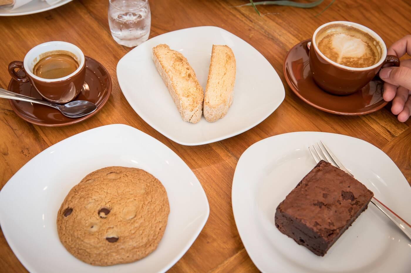 Zav Coffee Toronto