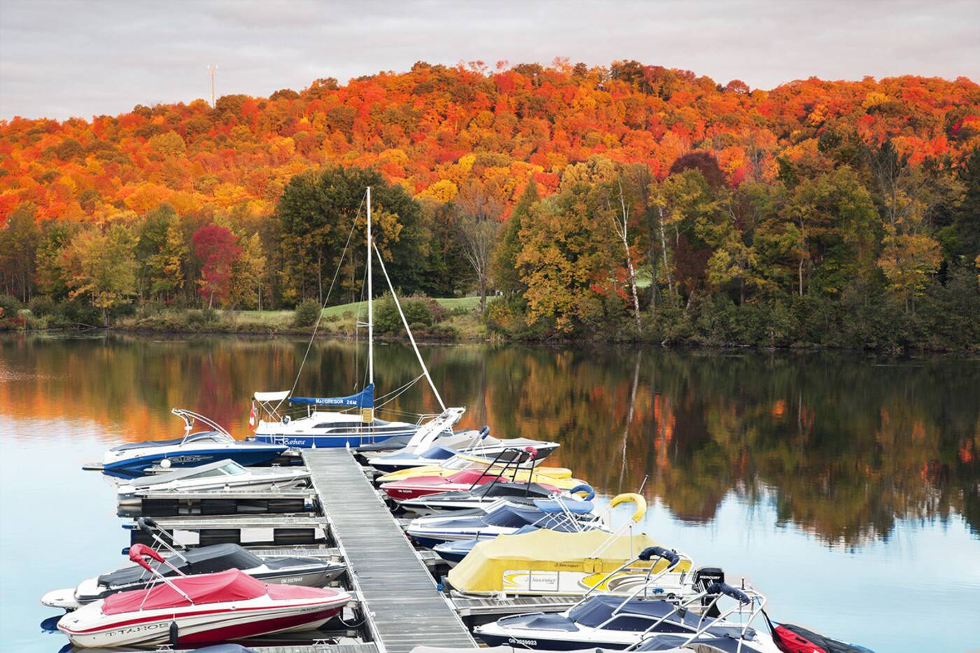 fall colours ontario