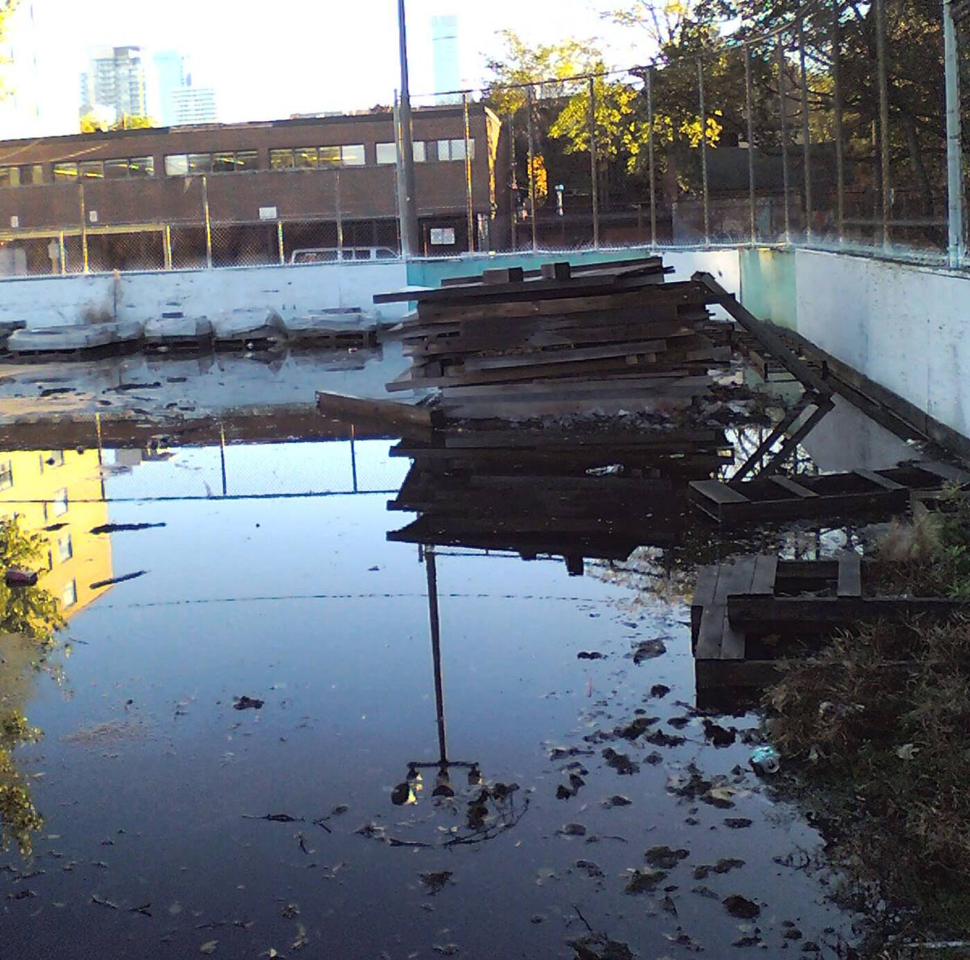 robert street rink