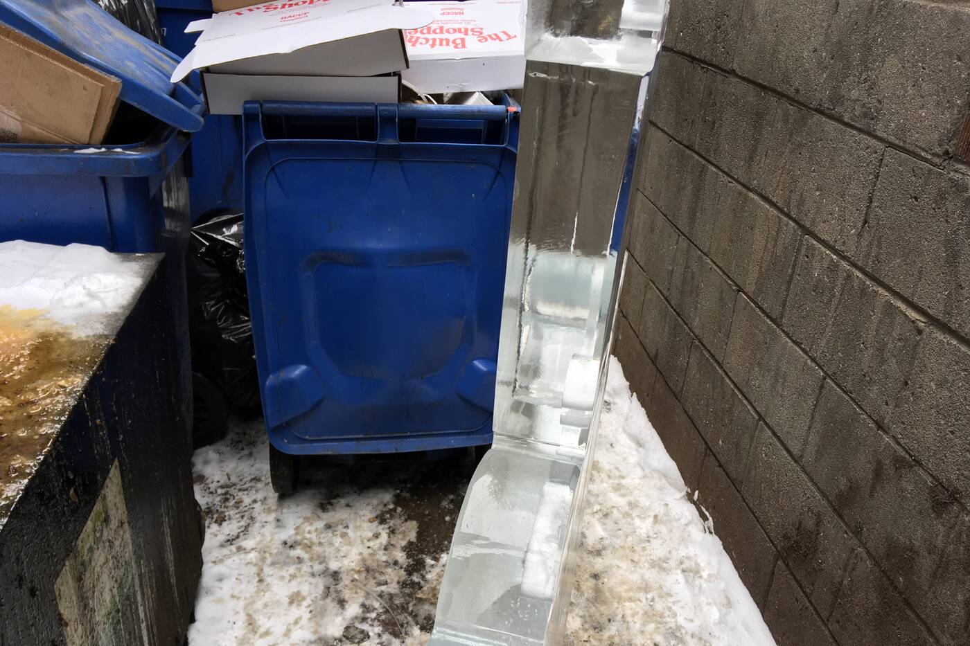 middle finger ice sculpture