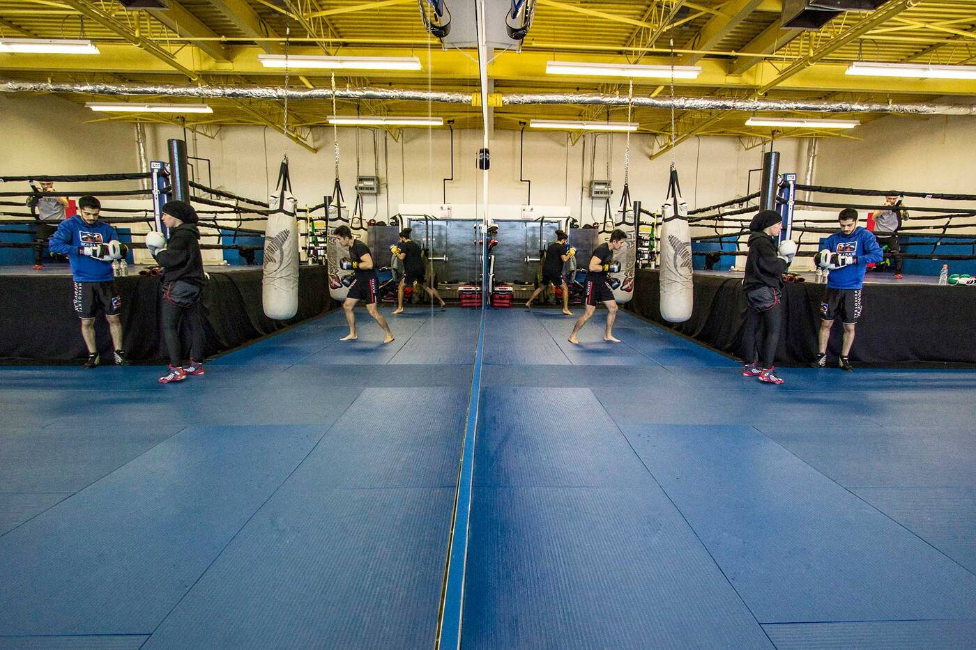 warrior muay thai toronto