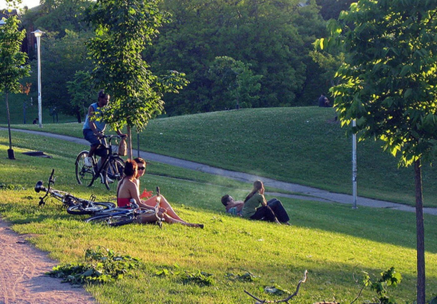 top parks for picnics toronto