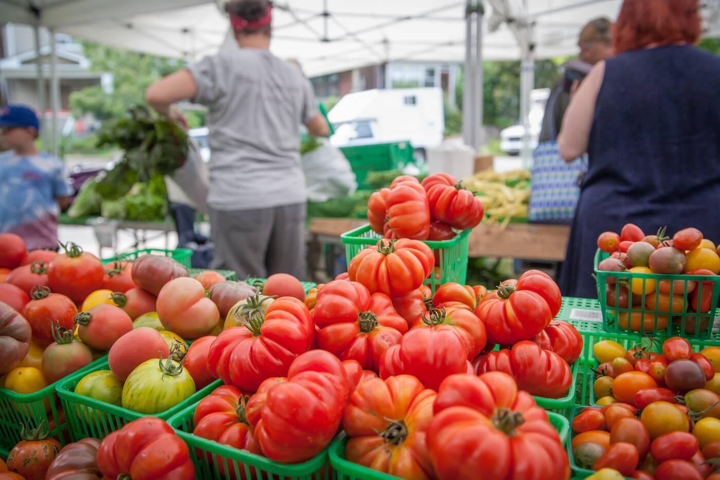 best farmers market toronto