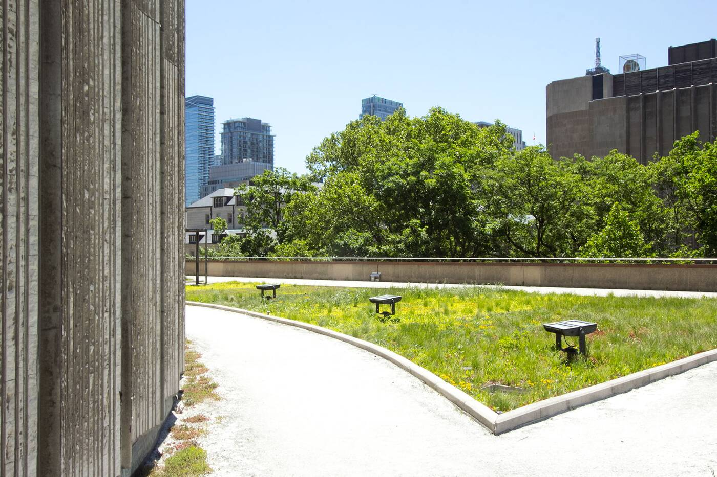city hall podium green roof toronto