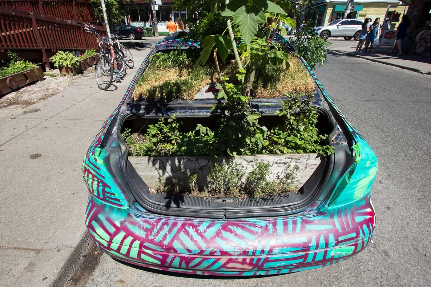 kensington garden car toronto