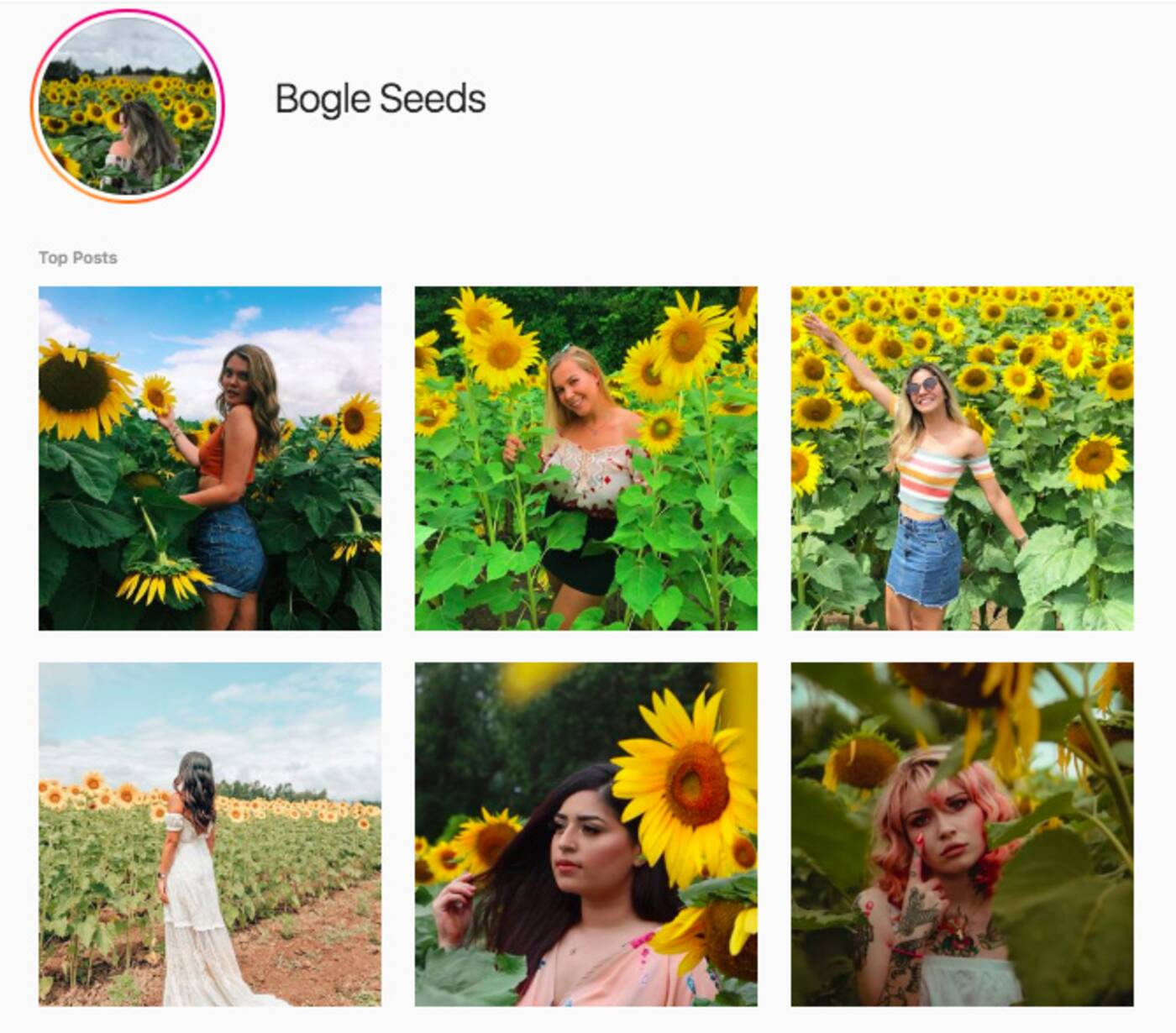 bogle seeds tourists