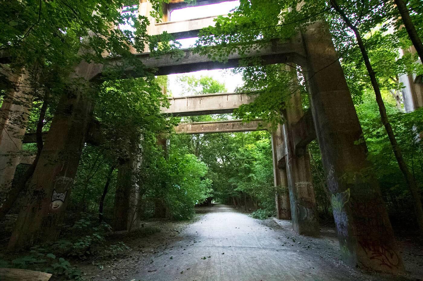 moore park ravine toronto