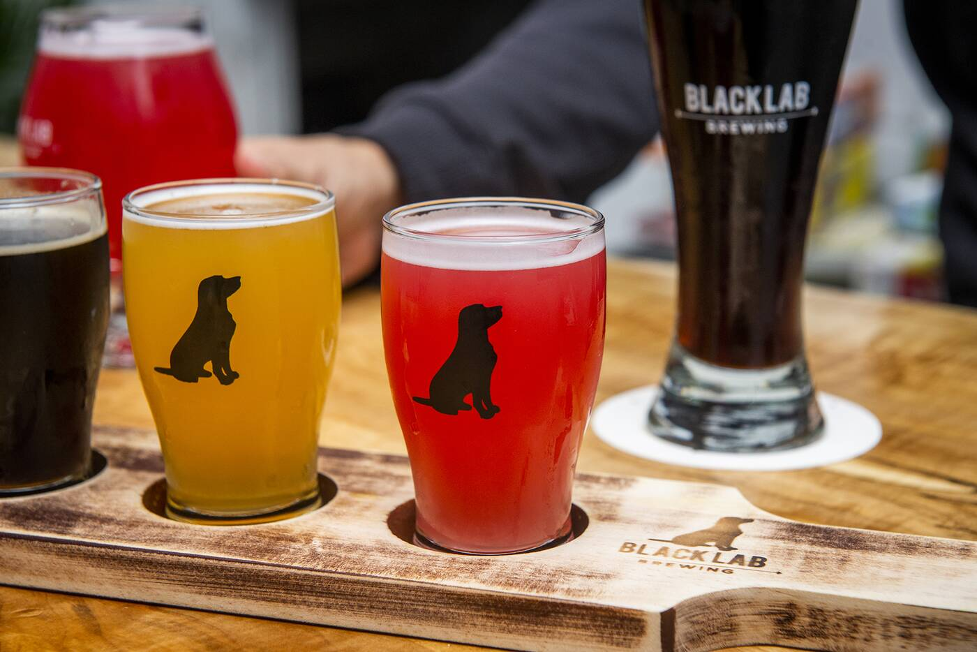 black lab brewing toronto
