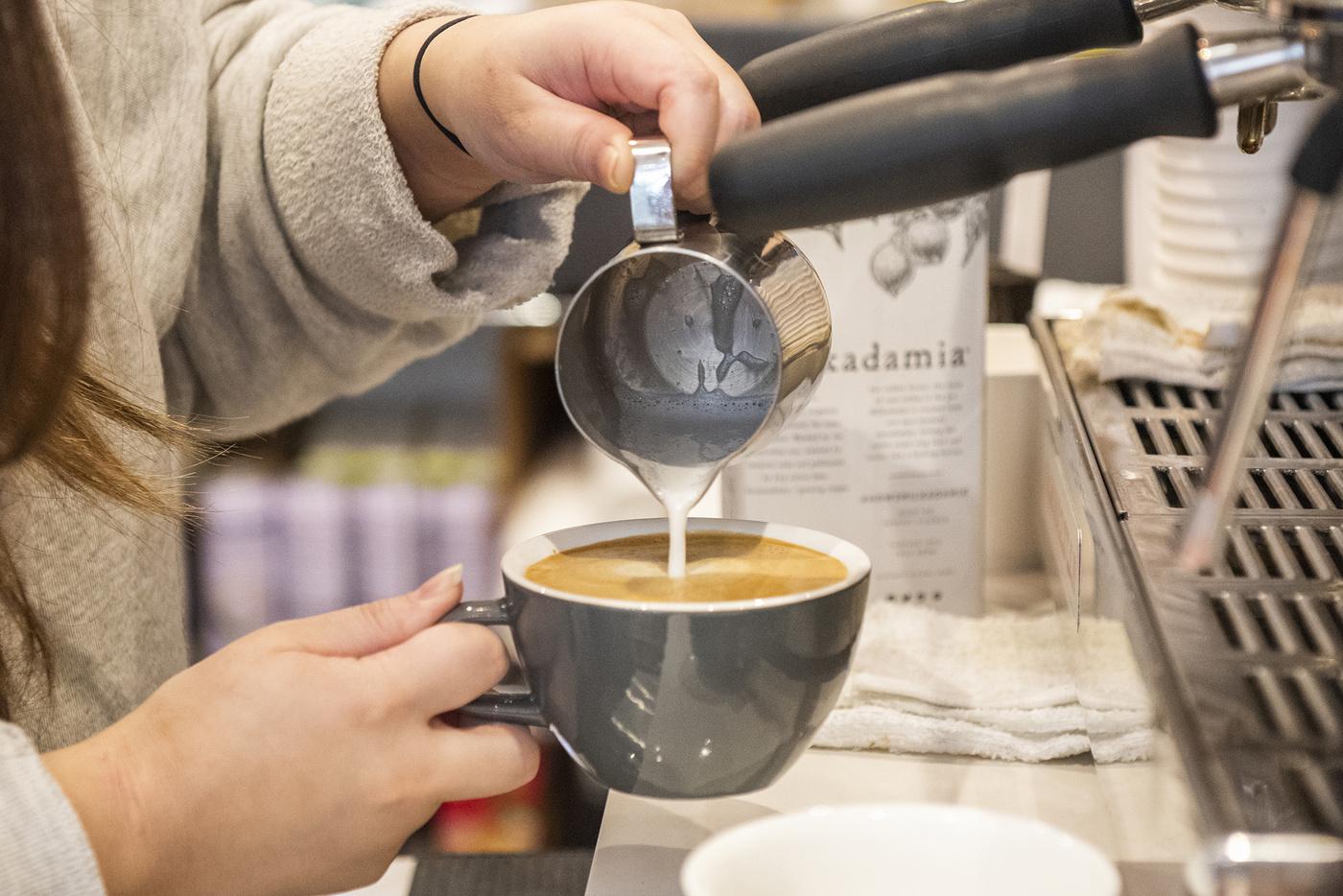 cozy coffee toronto