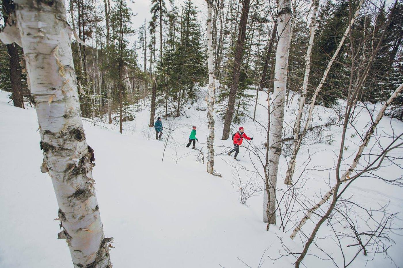 activities winter Toronto