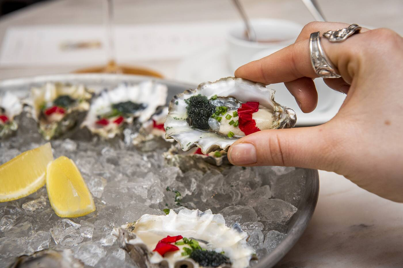 coffee oysters champagne toronto
