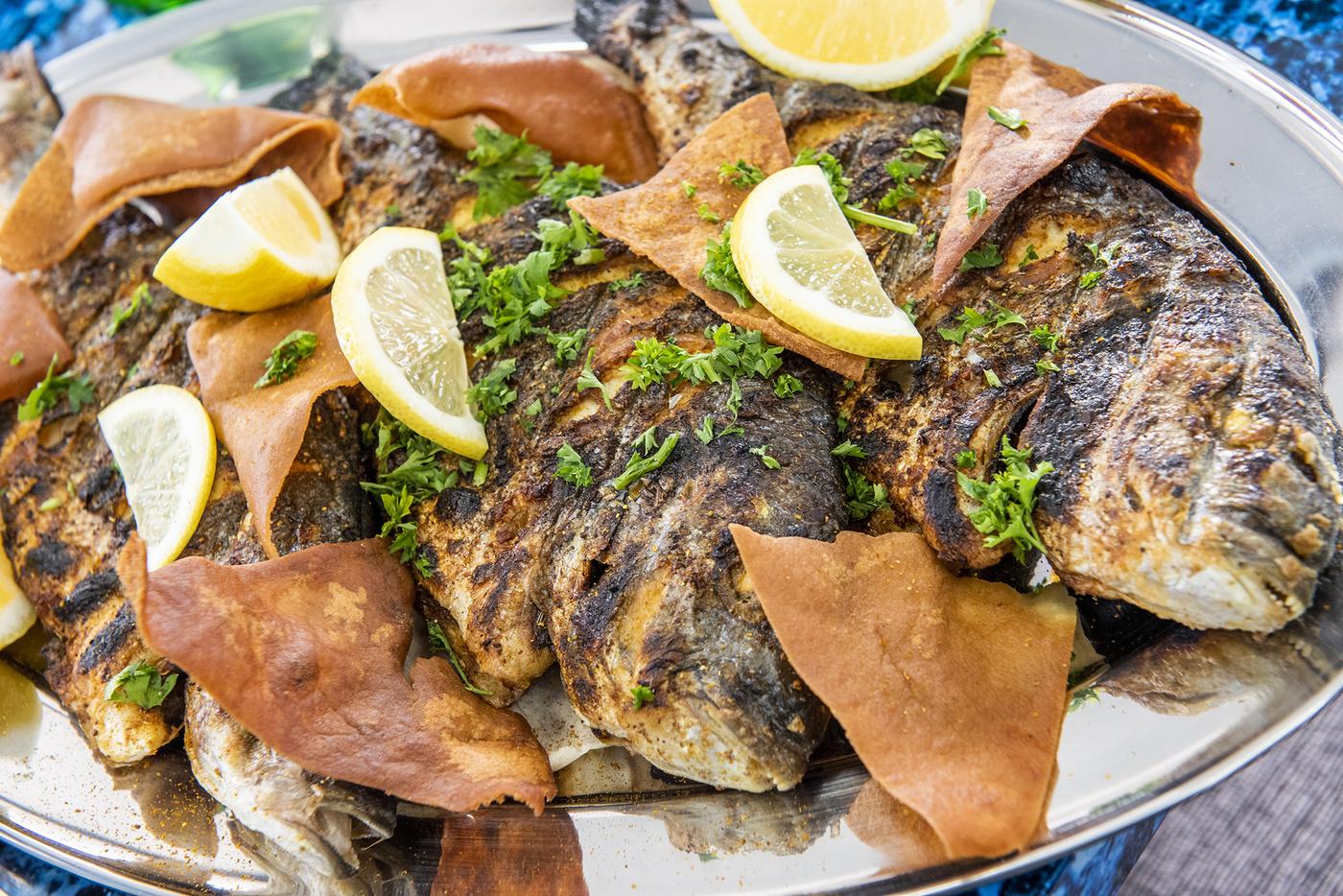 Ghadir Fish Toronto