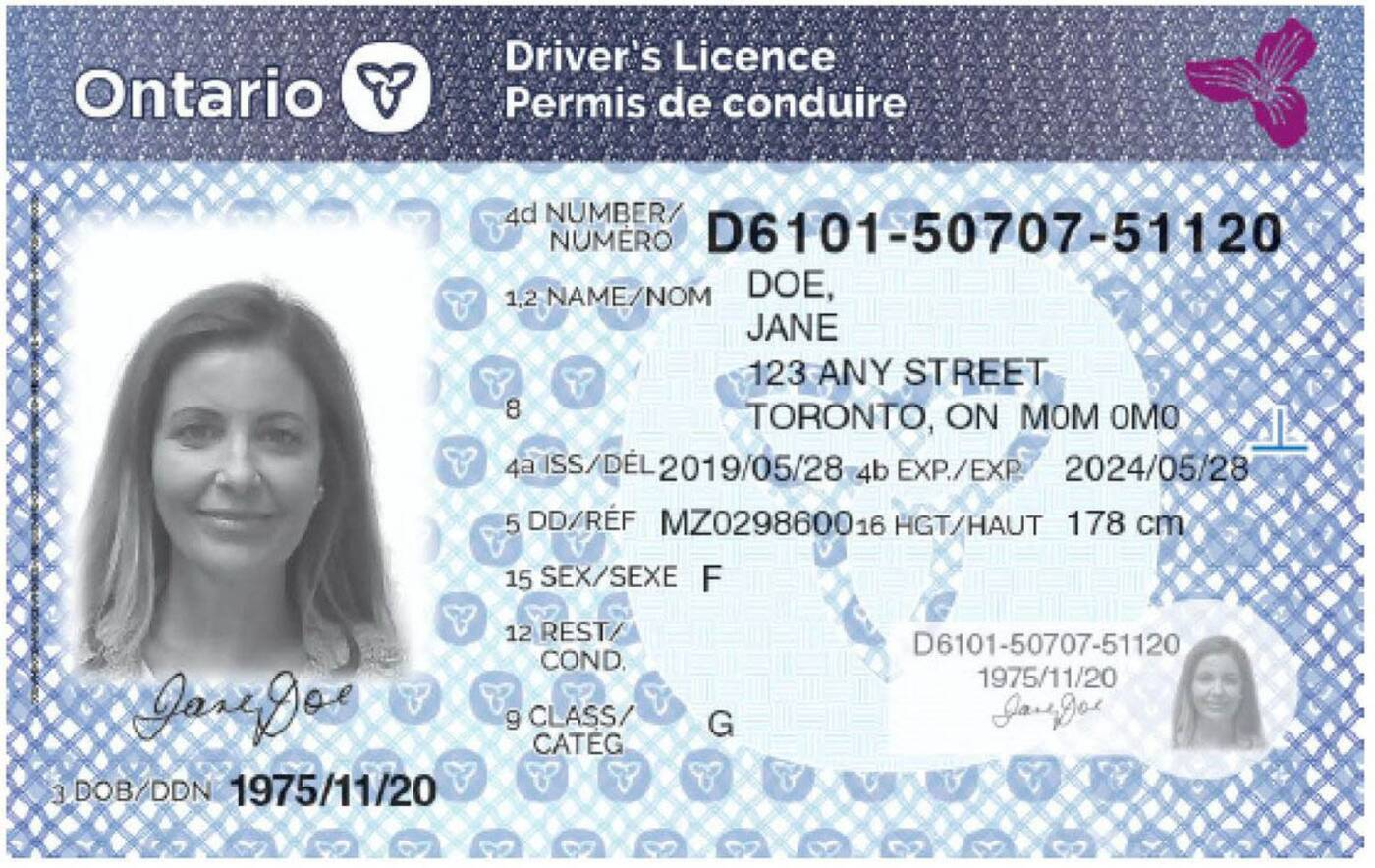 ontario new licence