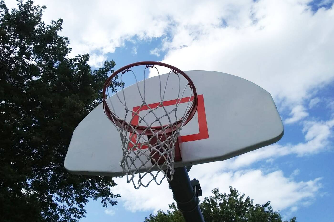 canadian tire basketball