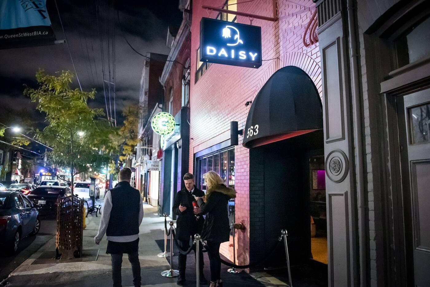 Daisy TorontoDaisy Toronto