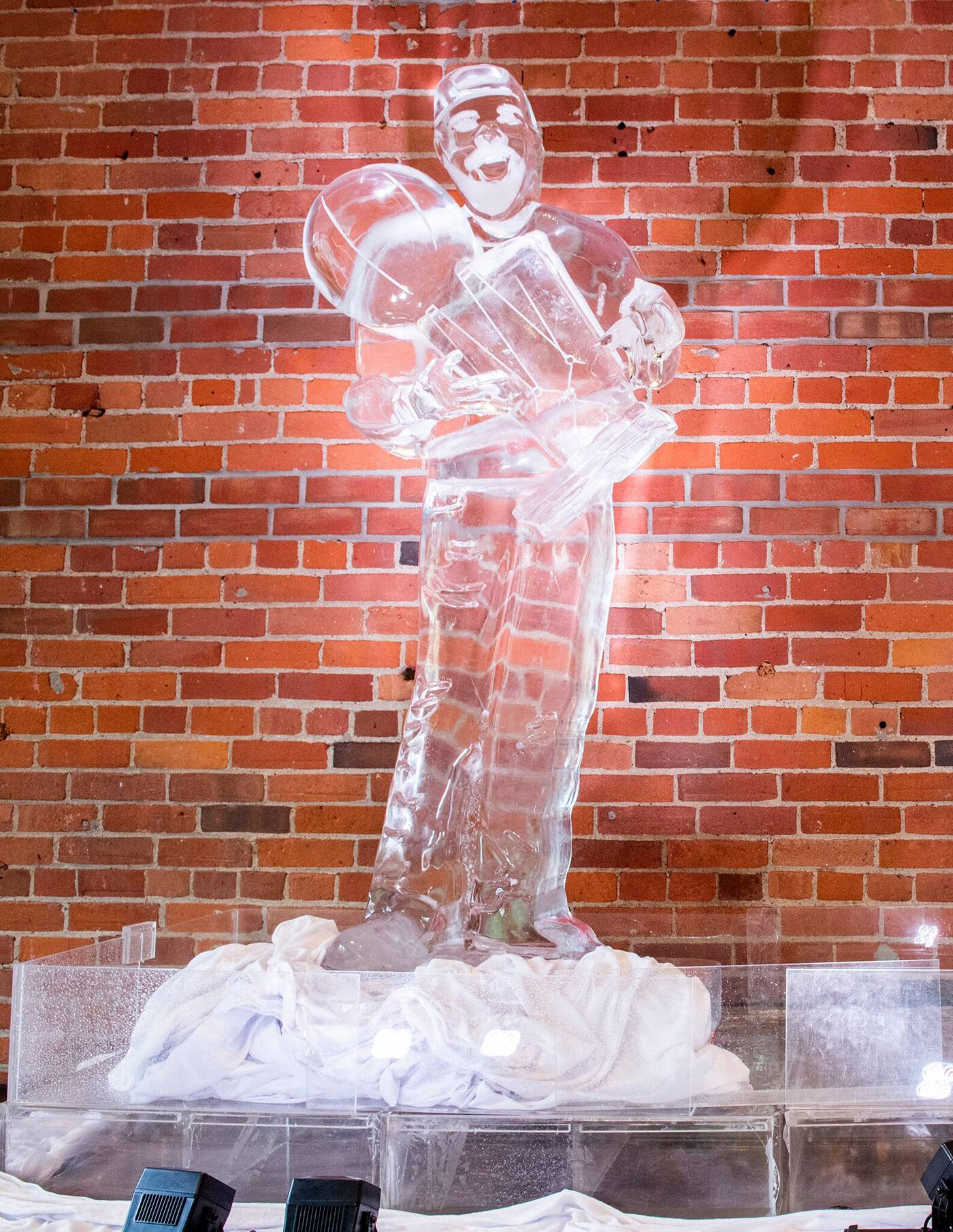 drake ice sculpture