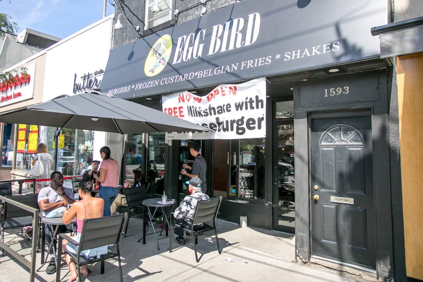 Egg Bird Toronto
