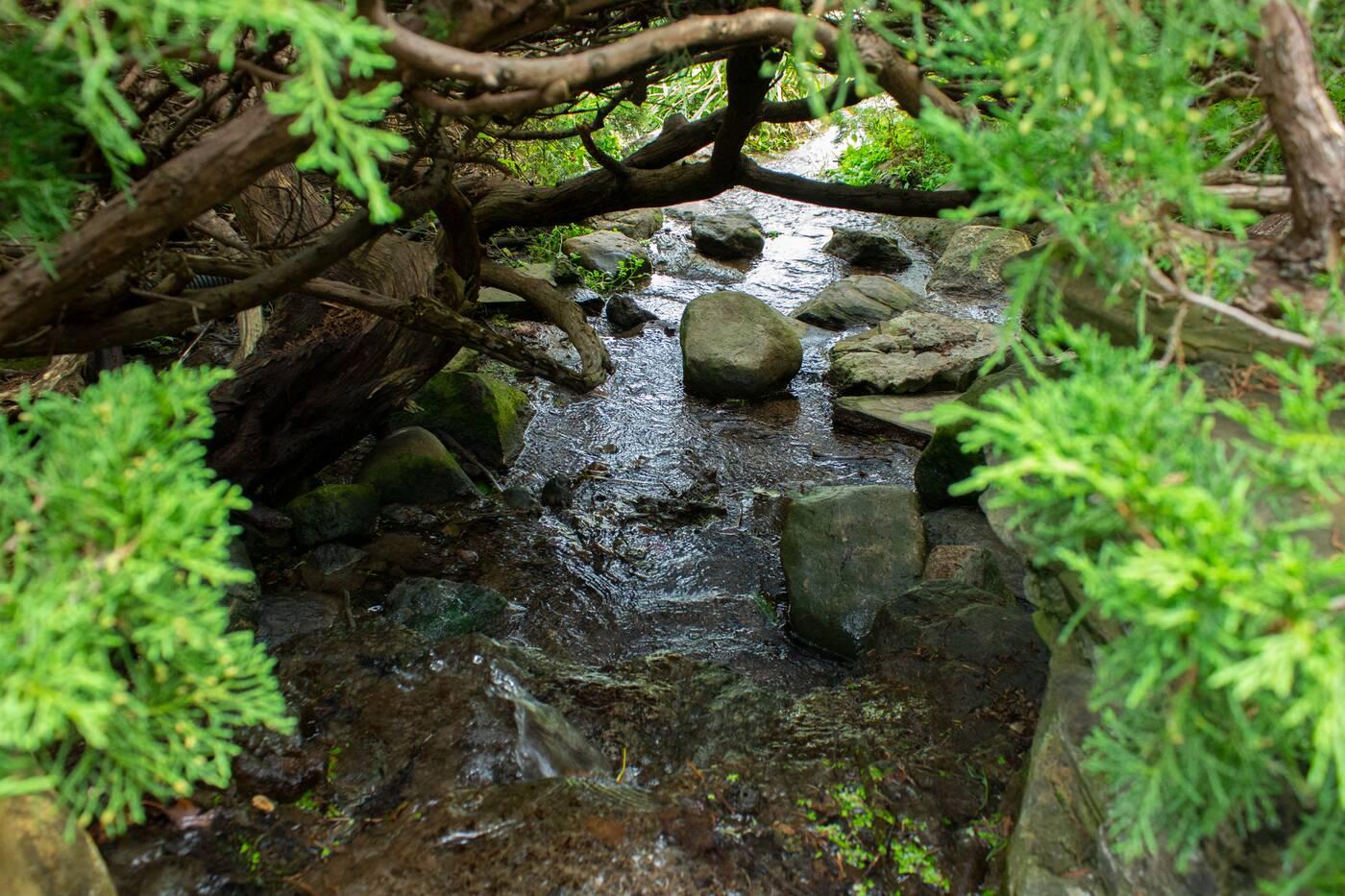 james gardens toronto