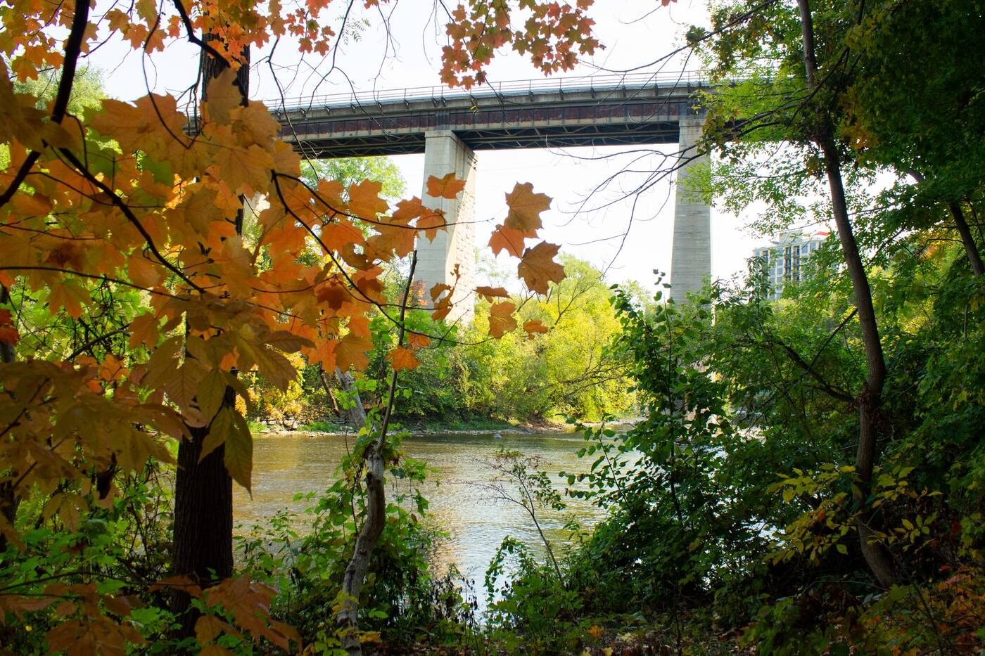 humber river trail