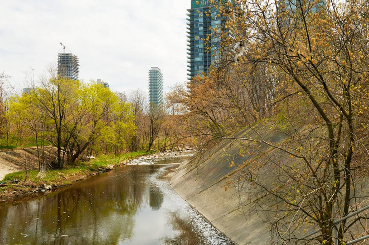 Mimico Toronto