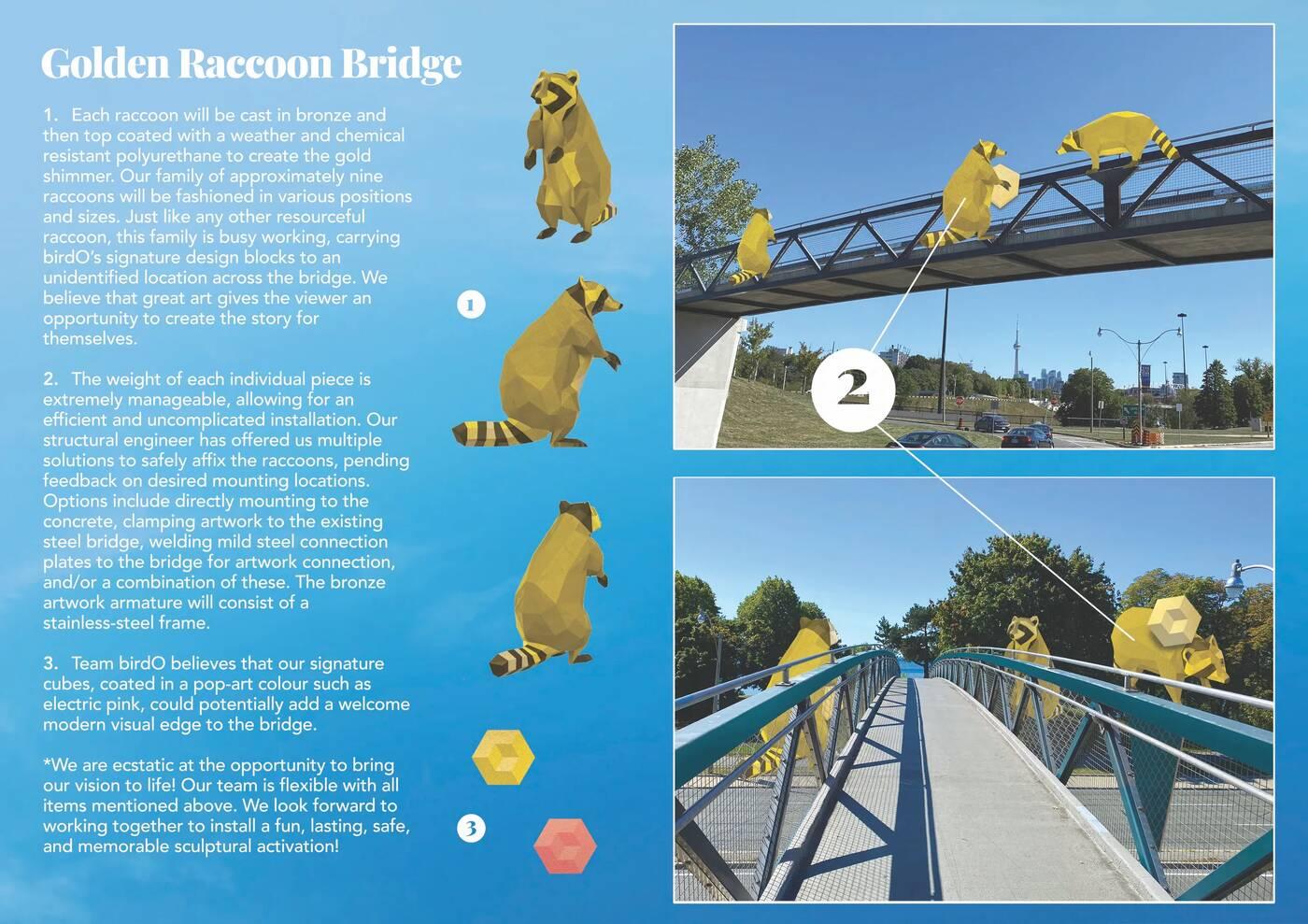 raccoon bridge toronto