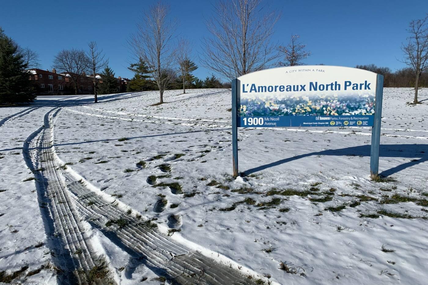 l'amoreaux north park