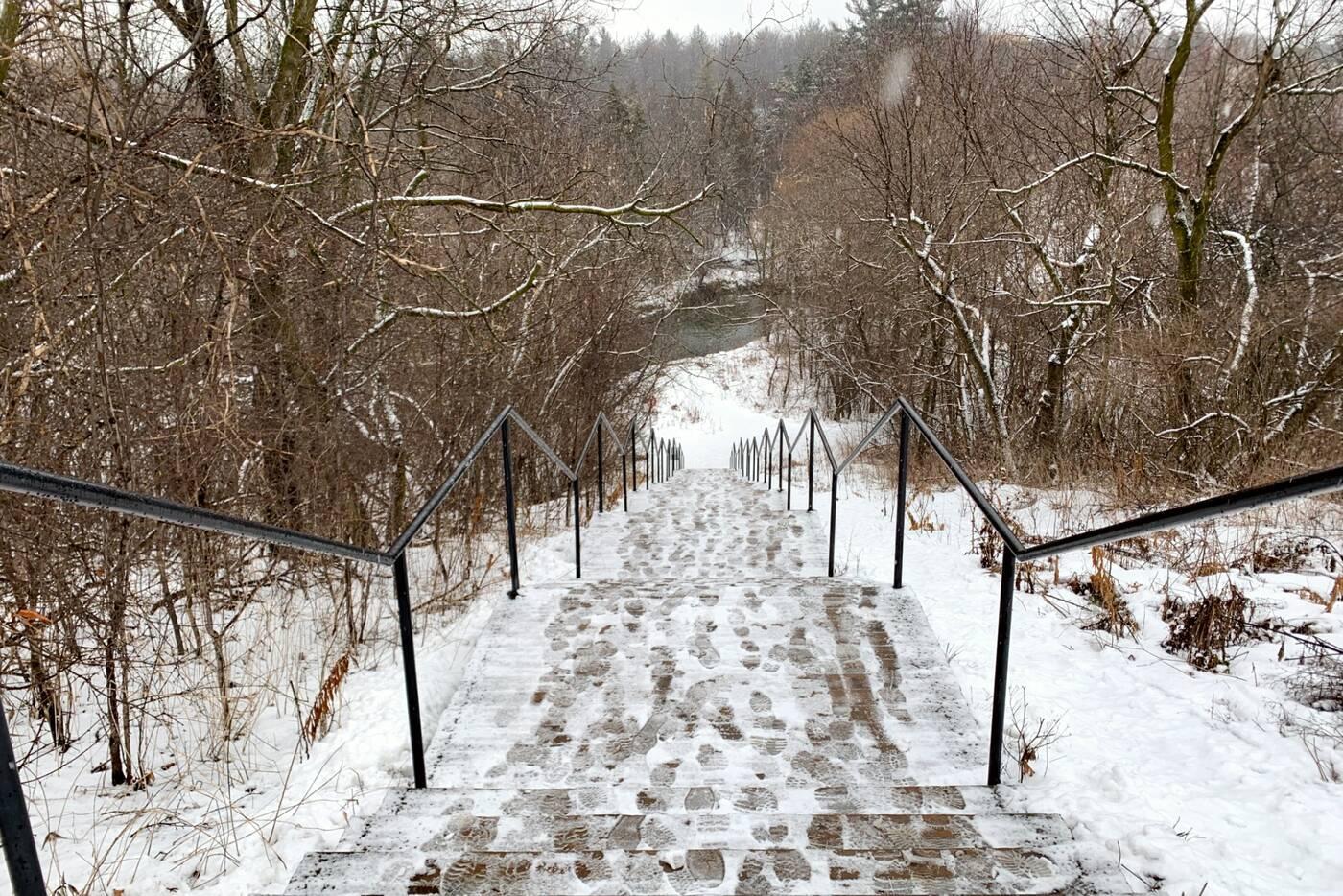 newtonbrook creek toronto