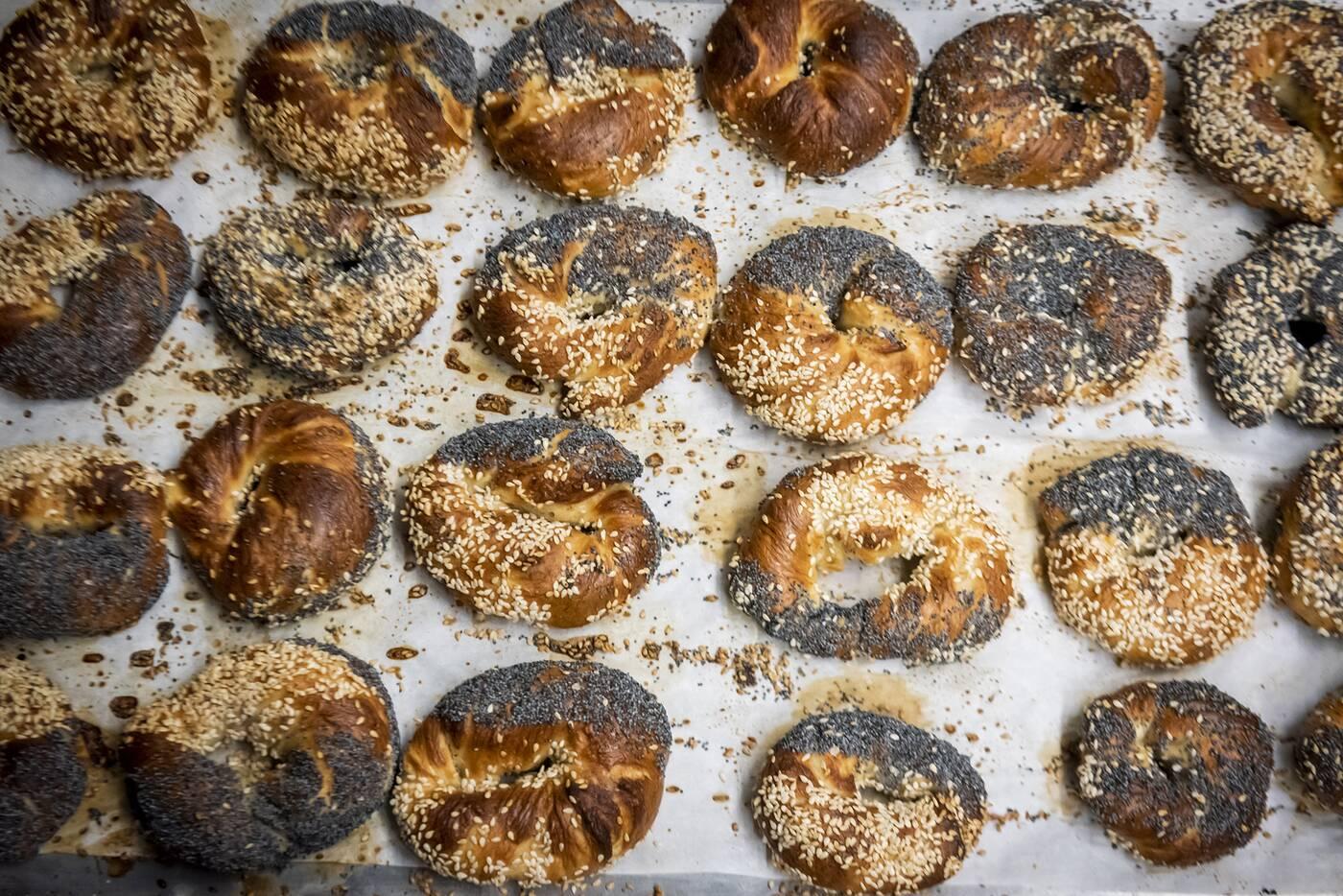 sherms bagels toronto