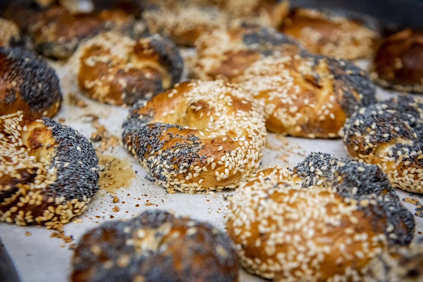 sherms bagels