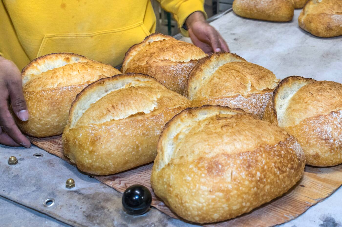 bread toronto