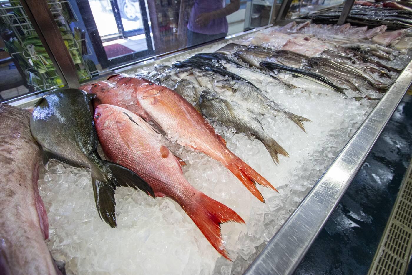 Fishmonger Toronto