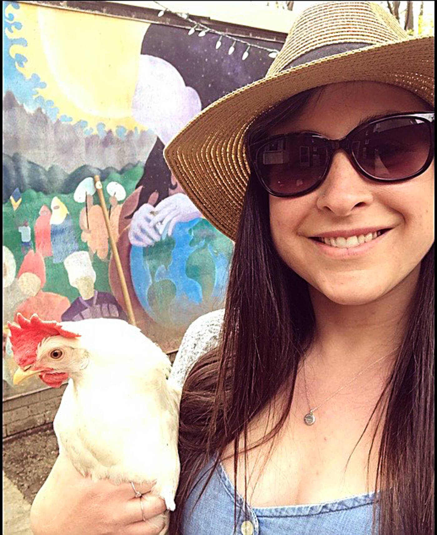 backyard chickens toronto