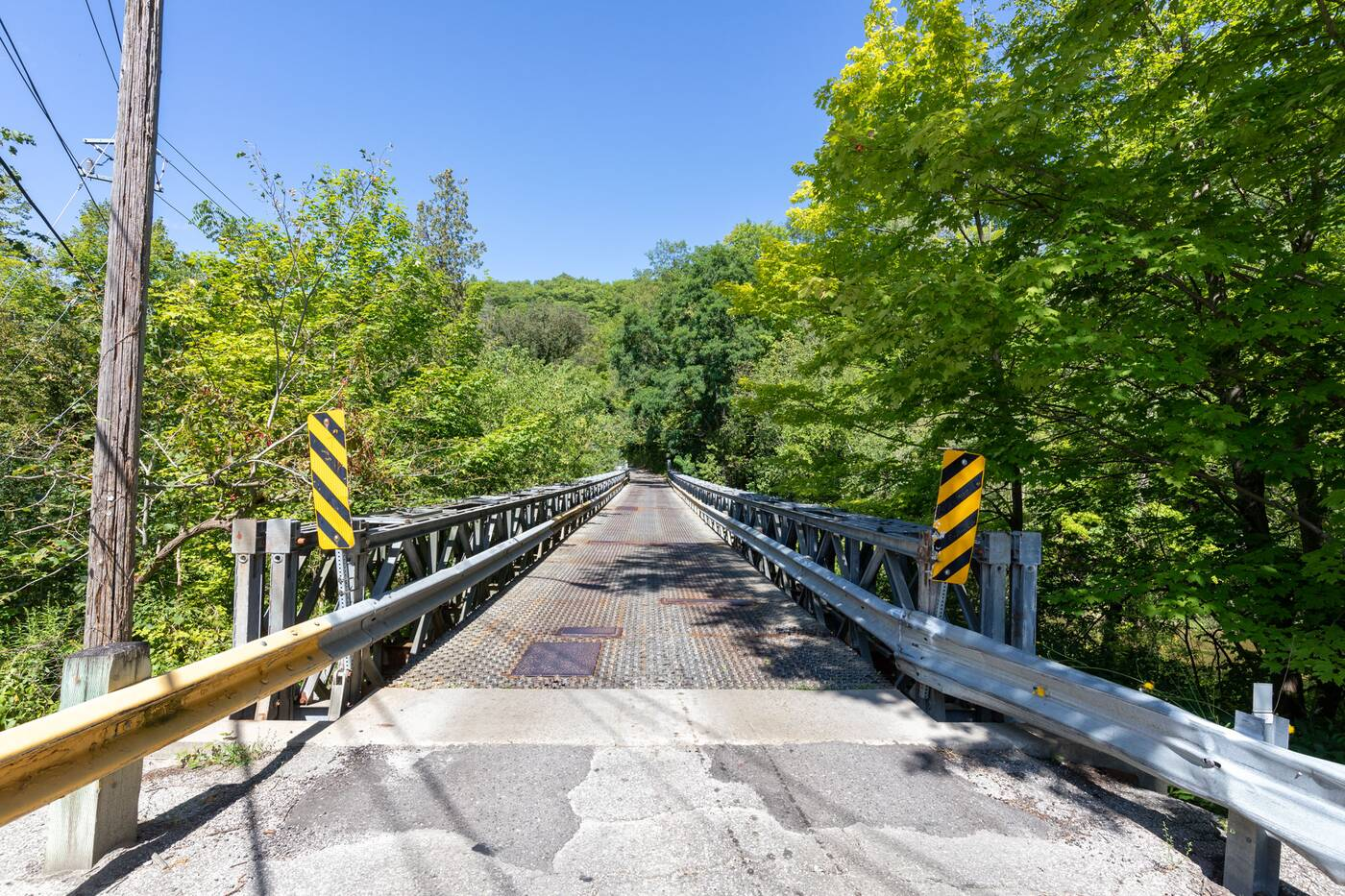 suspension bridge toronto